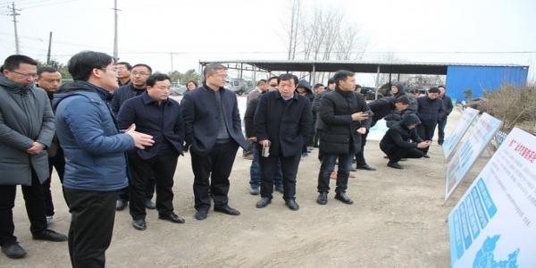 """江苏省农业农村厅召开""""超大方案""""现场学习观摩会议"""